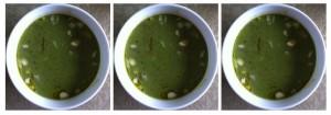 broccoli soup trio