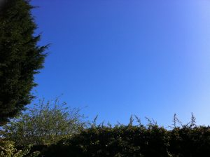 brilliant blue sky